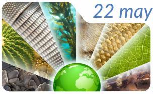 22-05-16-Biodiversidad