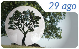 Dia nacional del arbol 2-01 (1)