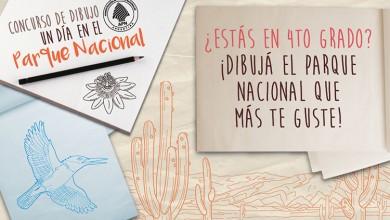 Concurso-de-dibujo-WEB