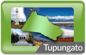 TUPUNGATO_placa