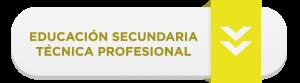 Educación Secundaria Profesional