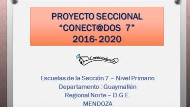 Conectados 7