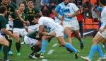Pumas vs Springboks