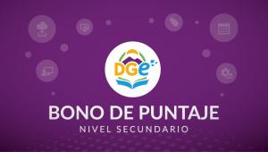 Bono - Nivel secundario-01