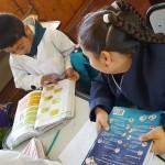 inovacion educa2