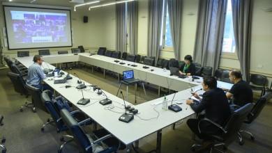 Videoconferencia ministros 31 marzo 01
