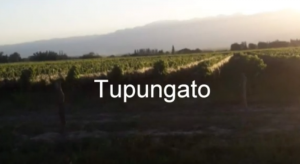 Esc. Ojo de Agua_Tupungato_topografia digital